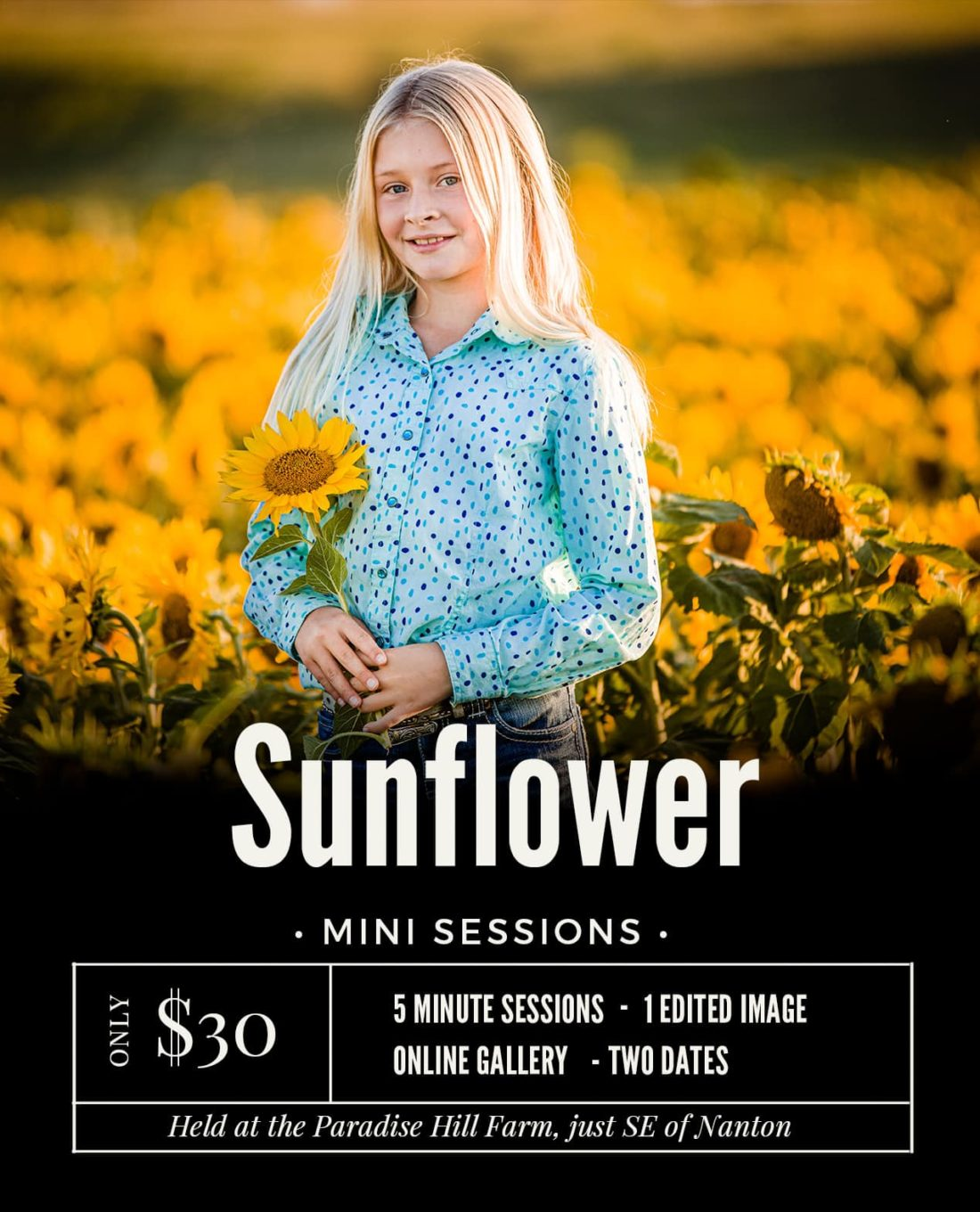 Sunflower-mini-sessions-nanton